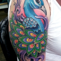 web_peacock_withlogo